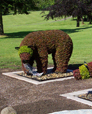 Bear Eco sculptures, Burnaby Mtn Golf course